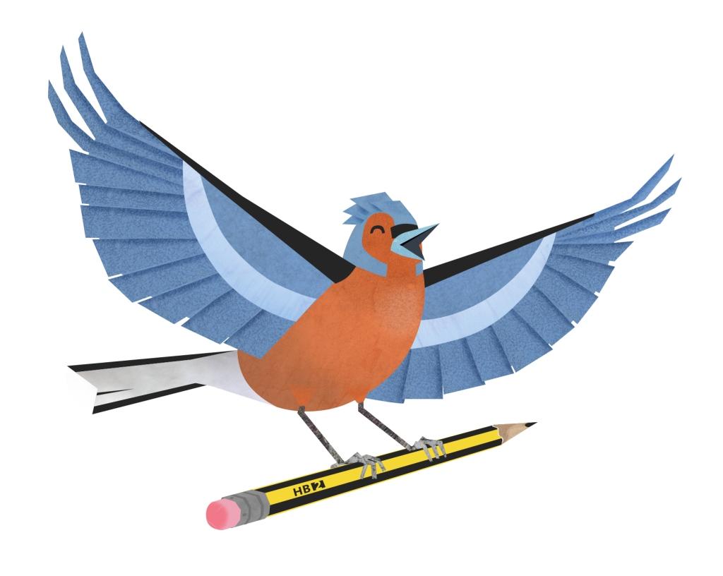 Chaffinch draw a bird day digital illustration pencil